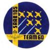 Team 60 logo