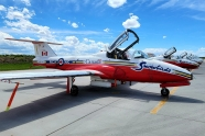 Snowbirds mark its 50th anniversary with Golden Centennaires tribute