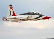 Civil Thunderbirds T-38 Talon. This plane is owned by Ross Perot, Jr. This was not a Thunderbird airplane. The most noticeable difference is that the VHF the Thunderbirds mounted on the dorsal area has been moved to the tip of the tail fin. Other differen