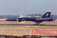 Blue Angels Hornet skidded of the runway