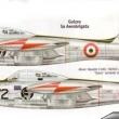 Guizzo aerobatic team