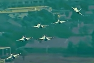 Thunderbirds had an incident during Los Angeles flyover on May 15