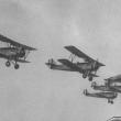 RAF Past Aerobatic Display Teams Overview
