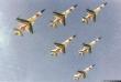Golden Crown F-5A