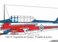 Esquadrilha da Fumaca T-6 Texan livery