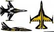 Black Eagles T-50 paint scheme