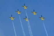 Baltic Bees to fly six jets