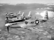 Guardian Angels F-51H Mustang. (Photo 175th Wing website)
