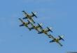 Baltic Bees L-39C Albatross