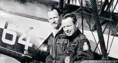 Manchots pilots