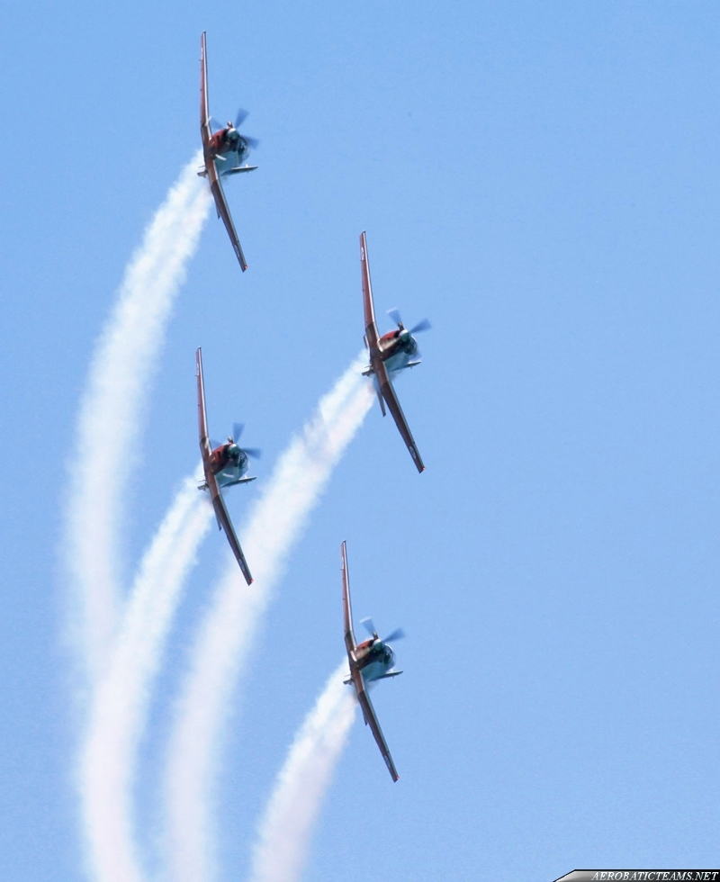 Israel Aerobatic Team T-6A Efroni, from June 2010