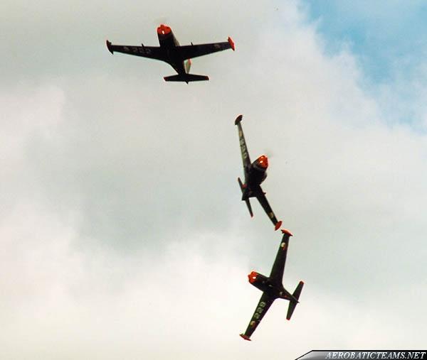 Team Warrior SF-260WE