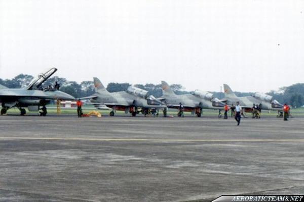 Jupiter Blue aerobatic team