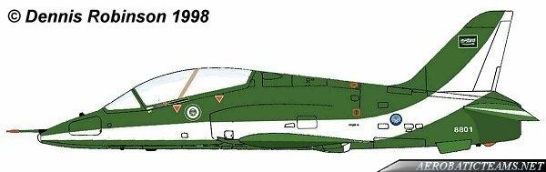 Saudi Hawks paint scheme
