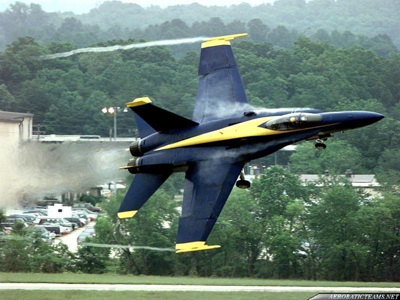 Blue Angels bird strike during Vero Beach Airshow