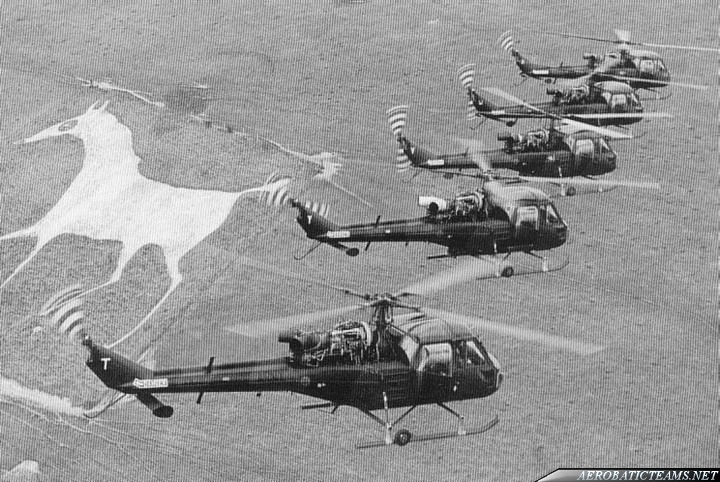 Army Eagles Westland Scout