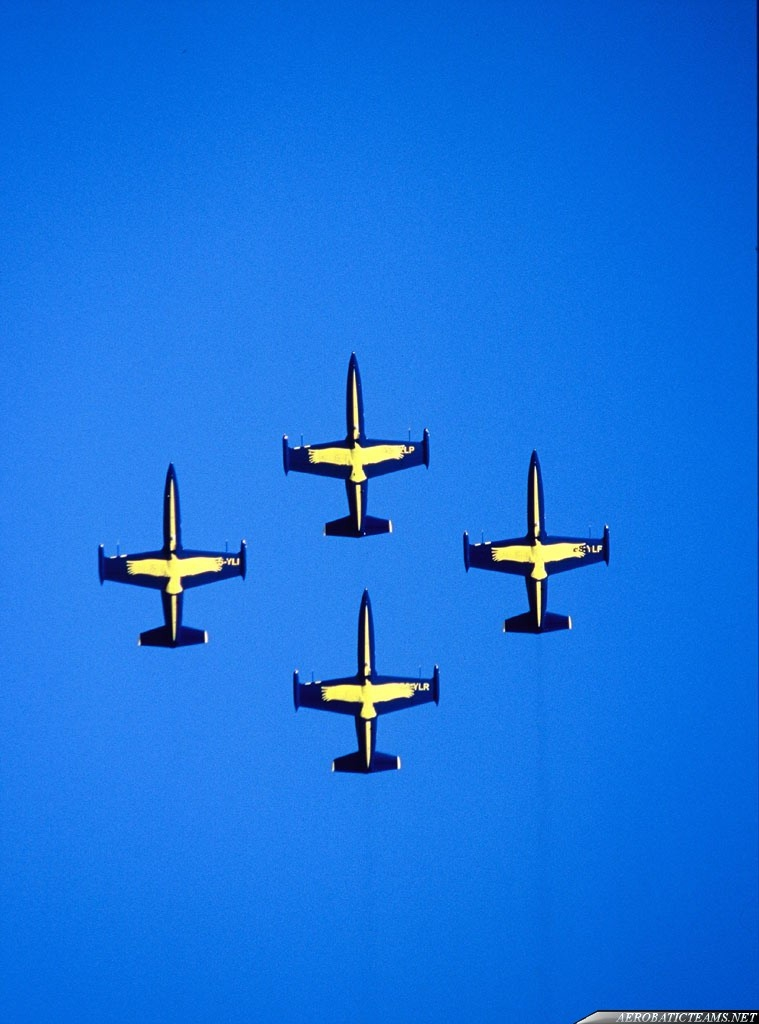 Khalifa Jet Team L-39