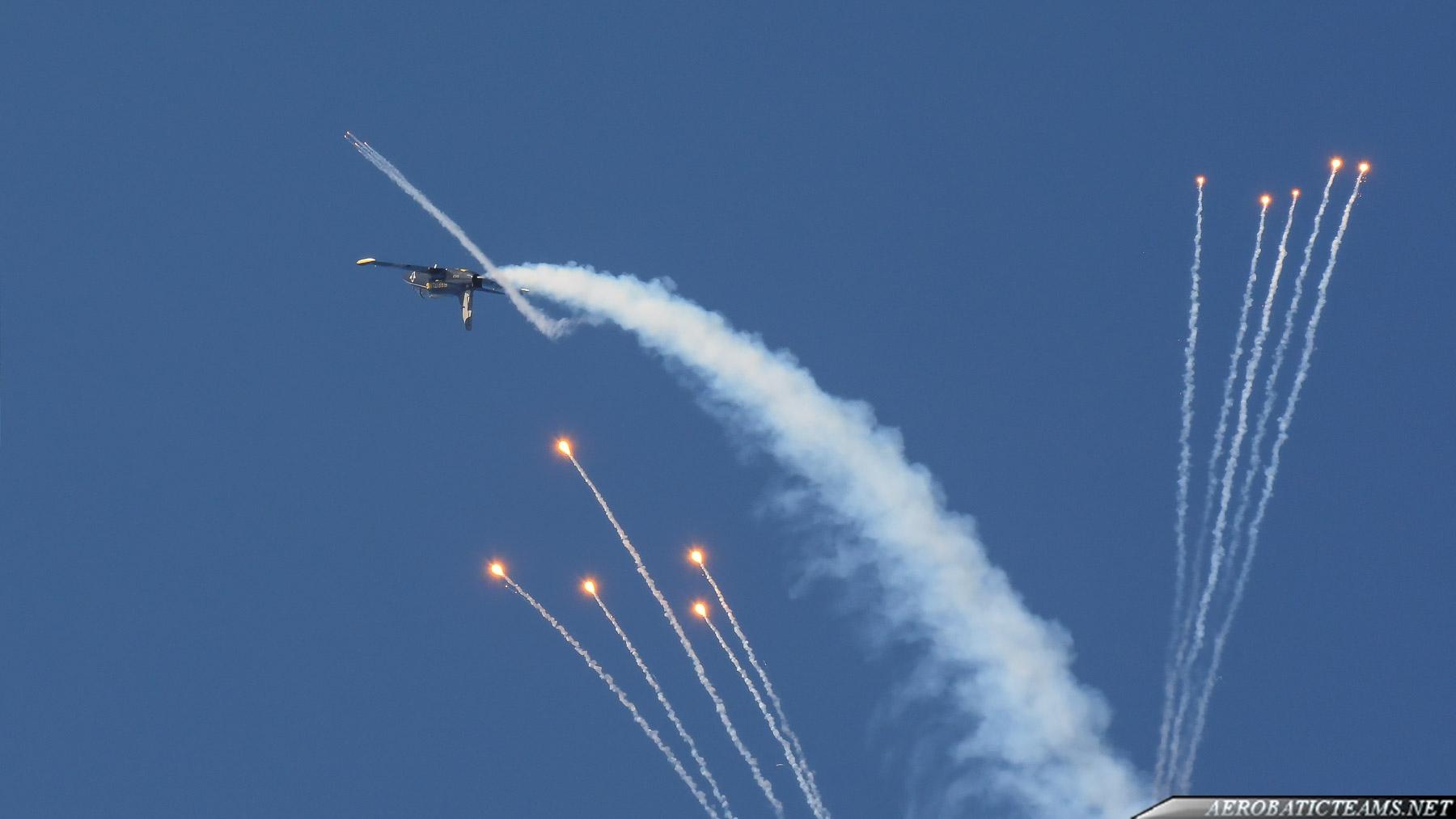 Breitling Jet Team L-39C