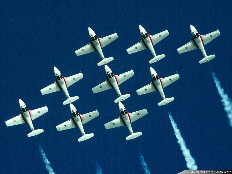 Snowbirds fly CT-114 Tutor since 1970.
