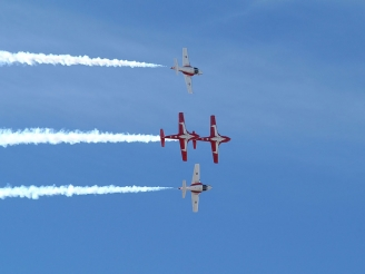 Snowbirds interrupt display season after an incident