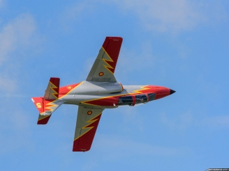 Patrulla Aguila fatal crash killing the solo pilot