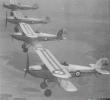 Hawker Fury Aerobatic Display Team