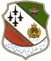 Golden Crown aerobatic team logo