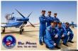 Blue Phoenix pilots
