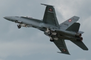 Patrouille Suisse could fly F/A-18 Hornet
