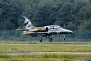 Breitling Jet Team crash incident