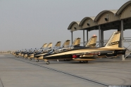 UAE Air Force Al Fursan display team first public demonstration