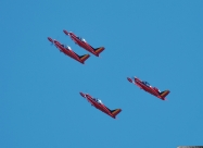 Red Devils fly SF260 from 2011