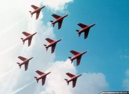 Red Arrows Gnat