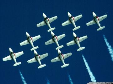 Snowbirds CT-114 Tutor